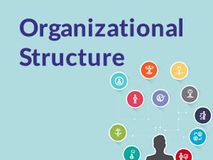 organizational structrure